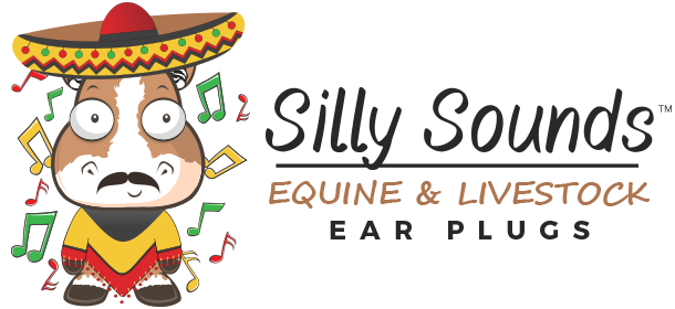 Silly Sounds, LLC